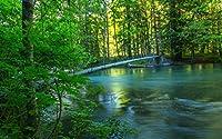 川、森、橋、夏、自然の風景 キャンバスの 写真 ポスター 印刷 旅行 風景 景色 - (50cmx33cm)