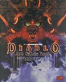 Diablo art guide book 画像
