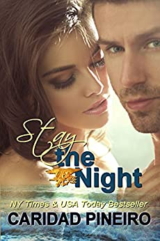 Stay the Night: Sexy Hot Miltary Heroes - Navy Seal, Navy, Army, Marines and More (Take a Chance Book 4) by [Pineiro, Caridad]