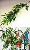 山久 七夕飾り お盆に お手入れ簡単シルクフラワー 「笹竹」(大サイズ 約120cm) CT触媒加工 1606-0013-tanp【造花】