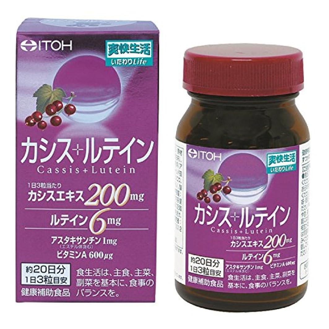 解放持参やむを得ない井藤漢方製薬 カシス+ルテイン 約20日分 300mgX60粒