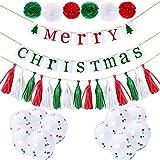 クリスマス飾り付け 飾り 装飾 壁飾り ペーパーフラワー MERRY CHRISTMAS ガーランド タッセル 紙吹雪風船 バルーン バルーン飾りセット  (クリア)
