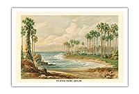 パルミラのヤシの木(トディの手のひら) - スリランカ(セイロン) - ビンテージな植物のイラスト によって作成された エルンスト・ヘイン c.1889 - アートポスター - 76cm x 112cm