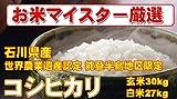 石川県産 【世界農業遺産認定・能登半島地域限定】 白米 コシヒカリ 30kg (精米後 27kg (9kg×3) ) (検査一等米) 平成28年産