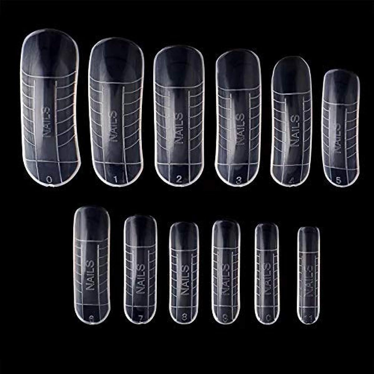 申し立て引き出し遺伝子ポリジェル用 ネイルデュアルフォーム 12サイズ×2(24枚セット) 繰り返し使える ネイルチップ