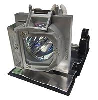 Optoma BL-FP280F P-VIP 280W Projector Lamp [並行輸入品]