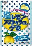 不二家 塩レモンスカッシュグミ 40g×10袋