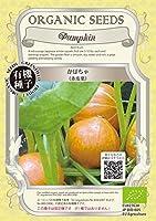 株式会社グリーンフィールドプロジェクト かぼちゃ<赤皮栗> ×2個セット 野菜/種