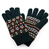 Aness (アネス) 手袋 フェアアイル柄ニット手袋 裏地フリース 保温性抜群 防寒 冷え対策 (フェアアイル柄xモスグリーン)