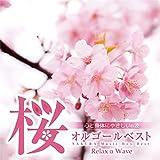 桜の栞 (Originally Performed by AKB48)