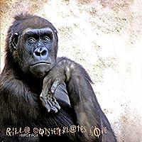 Rilla Contemplates Love