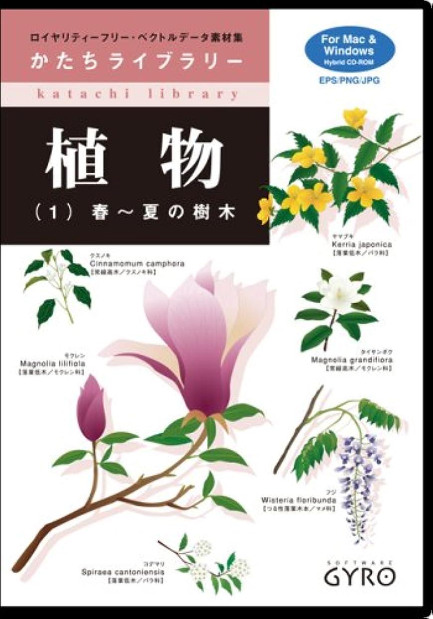 外交官放射性僕の植物(1) 春?夏の樹木
