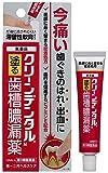 【第3類医薬品】クリーンデンタルN 16g