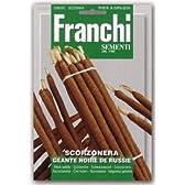 【FRANCHI社種子】【122/1】ブラックサルシファイ(西洋黒ゴボウ Scorzonera)】