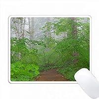 アメリカ、ワシントン、マウントレーニア国立公園。森の中のトレイル。 PC Mouse Pad パソコン マウスパッド