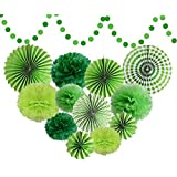 Green Tissue Pom Poms Flower For Dinosaur Birthday Baby Showers Party Decorations Supplies [並行輸入品]