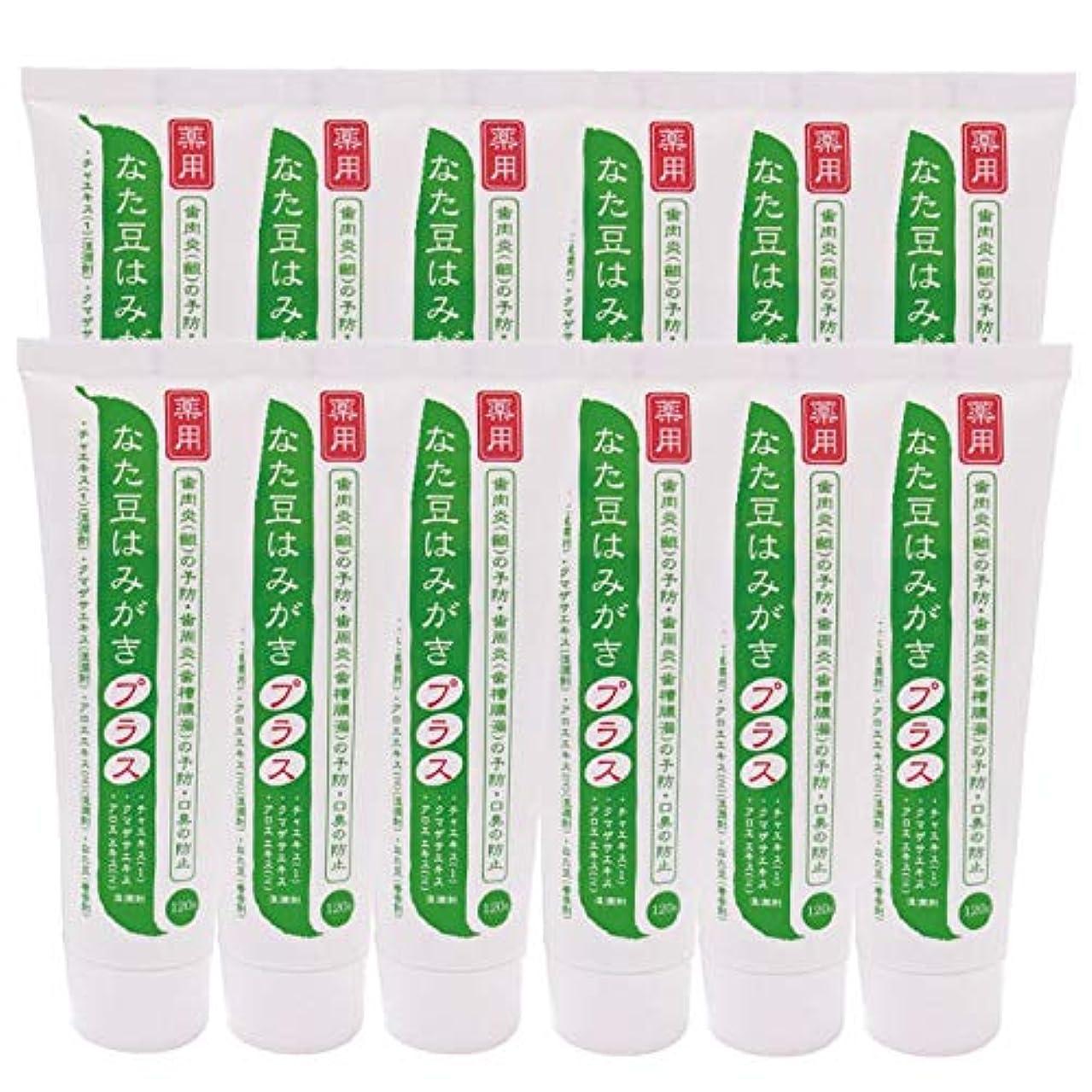 透ける実験をする訴える薬用 なた豆はみがきプラス 120g(12本セット)
