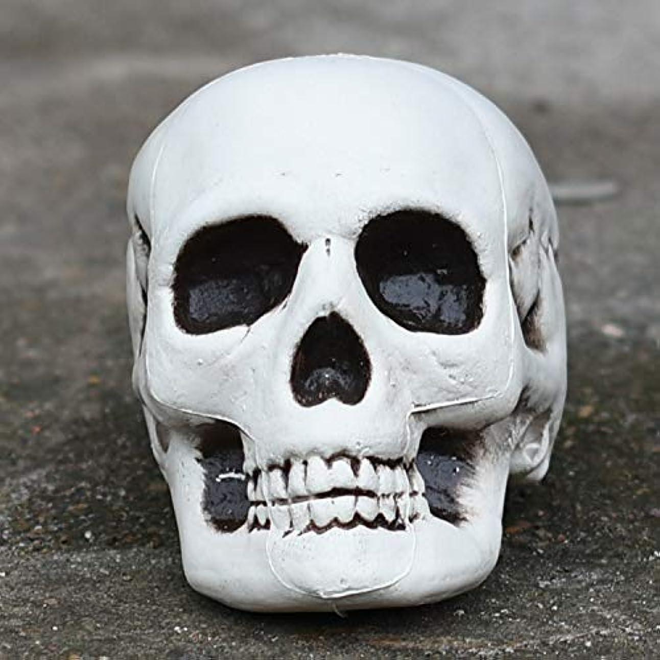 サーバ原因スタイルETRRUU HOME デッドトゥースハロウィン小道具バーお化け屋敷秘密の部屋スカル装飾品シミュレーション骨モデル