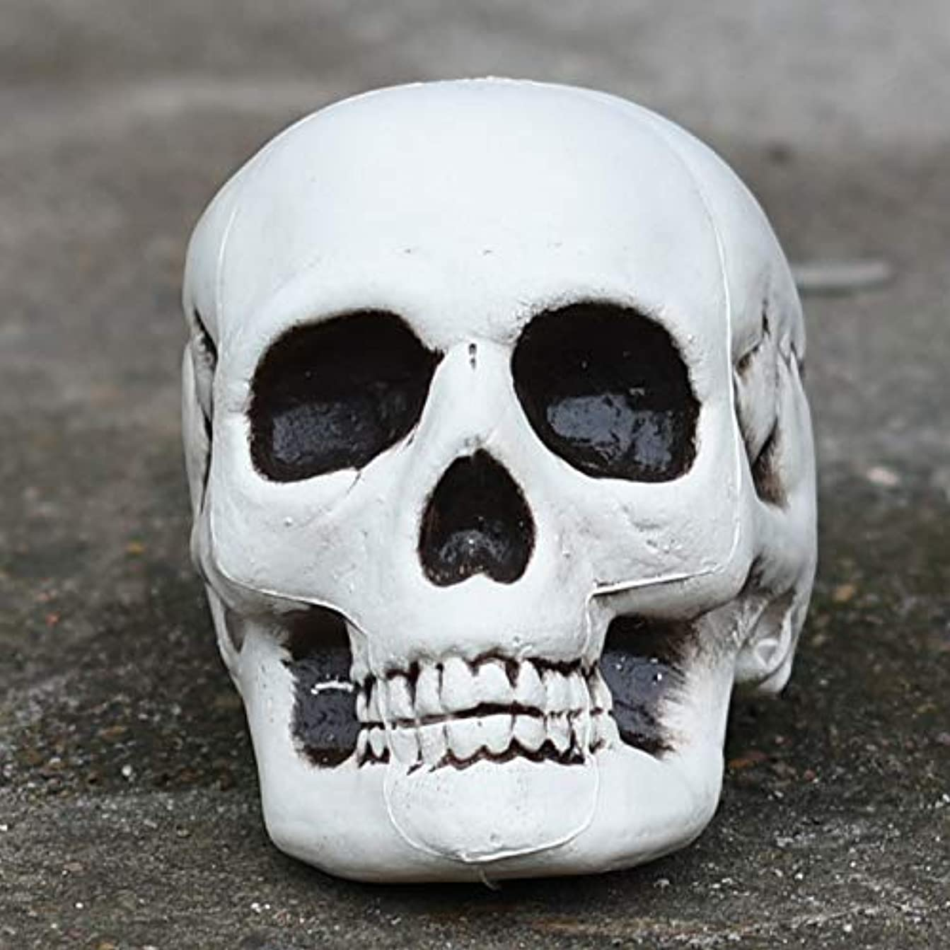 チューブうなずく可能ETRRUU HOME デッドトゥースハロウィン小道具バーお化け屋敷秘密の部屋スカル装飾品シミュレーション骨モデル