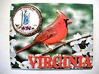 Virginia with State Seal Fridge Magnet [並行輸入品]