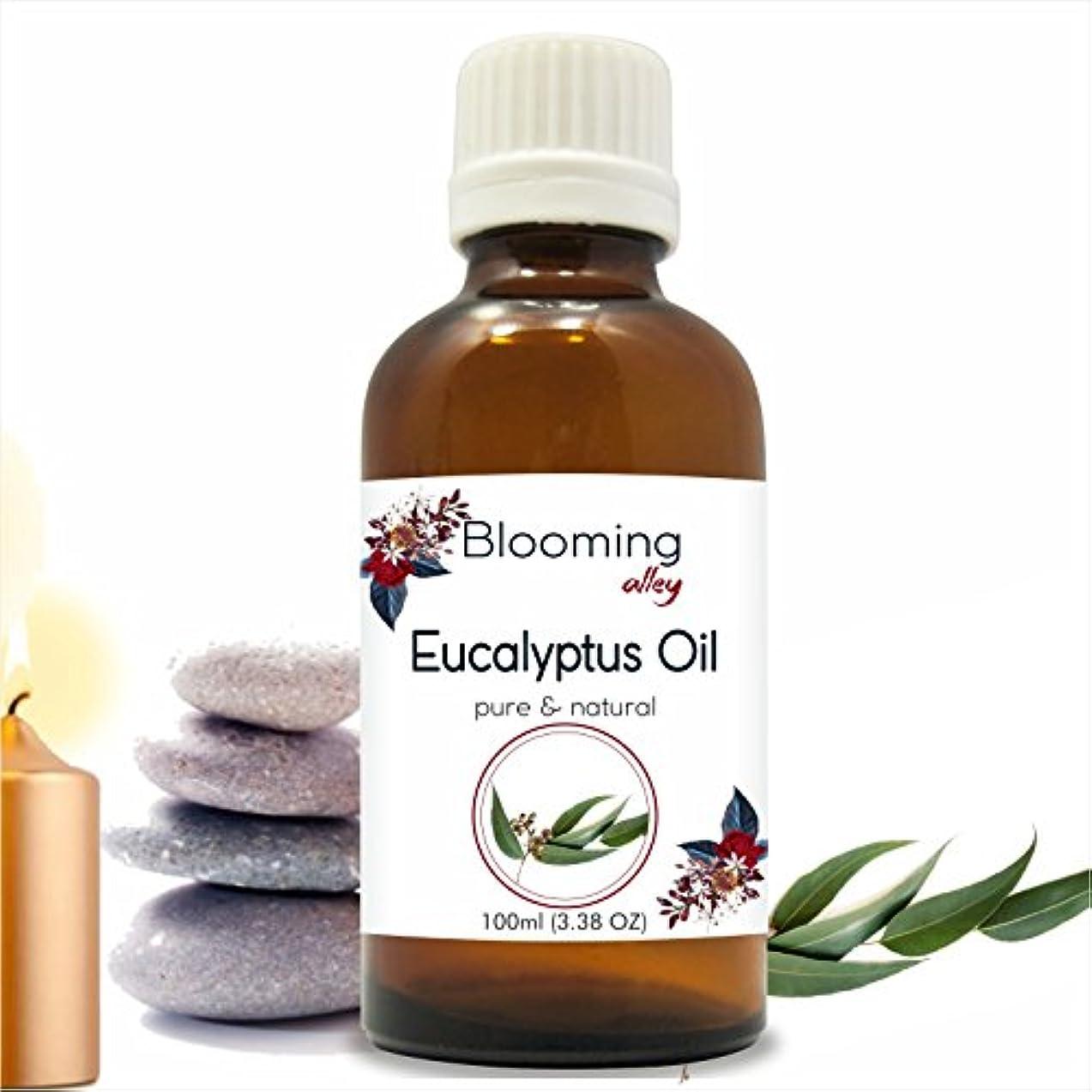 円形背景チャートEucalyptus Oil (Eucalyptus Globulus) Essential Oil 100 ml or 3.38 Fl Oz by Blooming Alley
