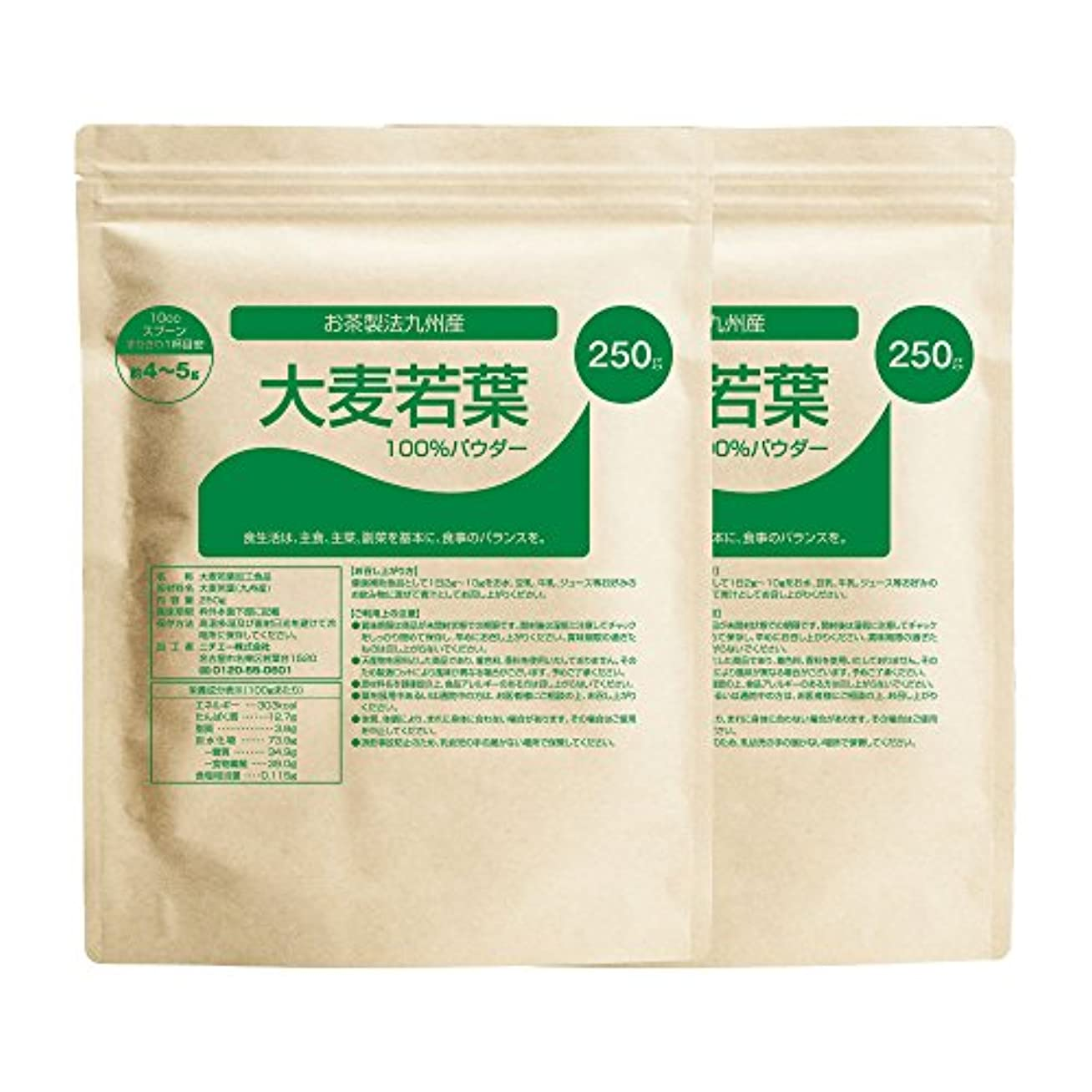 ダーリン任命長々とnichie 大麦若葉 青汁 100% 九州産 お茶製法 500g(250g×2袋)