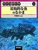 原始的な魚のなかま (知られざる動物の世界) 画像