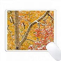 秋の色のアスペンの木々。 Uinta-Wasatch-Cache NF、Utah PC Mouse Pad パソコン マウスパッド