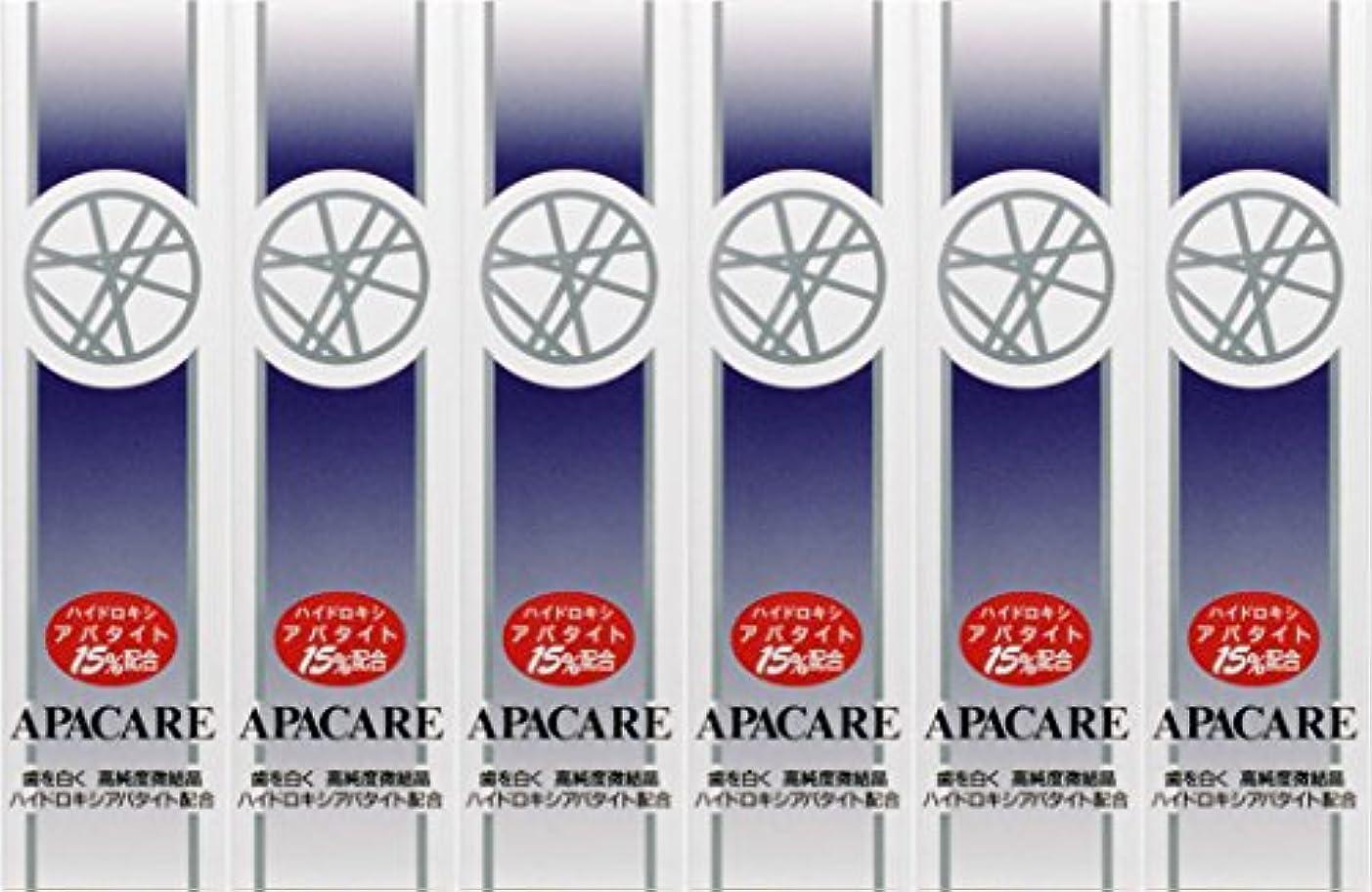【6個セット】アパケア-A120g