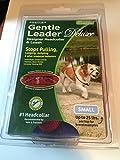 PetSafe ジェントルリーダー・デラックス リード&トレーニングDVD付 (S, レッド(犬とハート))