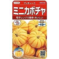 サカタのタネ 実咲野菜1004 ミニカボチャ プッチィーニ 00921004 10袋セット