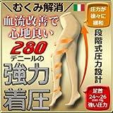 ミモザ 弾性ストッキング280デニール 医療用 下肢静脈瘤 脂肪吸引術後ケア (L, ブラック)