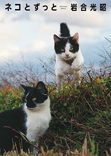 岩合光昭 写真集「ネコとずっと」の詳細を見る