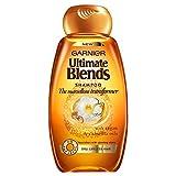 Garnier Ultimate Blends Shampoo - The Marvellous Transformer (250ml) ガルニエ究極のシャンプーをブレンド - 素晴らしい変圧器( 250ミリリットル)を [並行輸入品]
