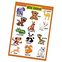Baosity 子ども 英語 学習 壁紙 学習ポスター 就学前教育 家庭 教室 保育園 幼稚園 壁ポスター 多種選択可能   - 野生動物