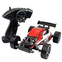 Fashionwu ラジコンカー RCおもちゃ オフロード 2.4Ghz 2WD 防水 リモコン車