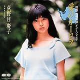愛のオーロラ [EPレコード 7inch]