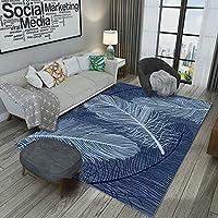 洗える ラグ 1畳 1.5畳 80*120 ラグマット カーペット 絨毯 滑り止めシート 120x160cm 滑り止め付き ふわふわ サラサラ 長方形 夏 カラー 床暖房対応 丸洗いもOK じゅうたん 和室 寝室 お手入れ簡単