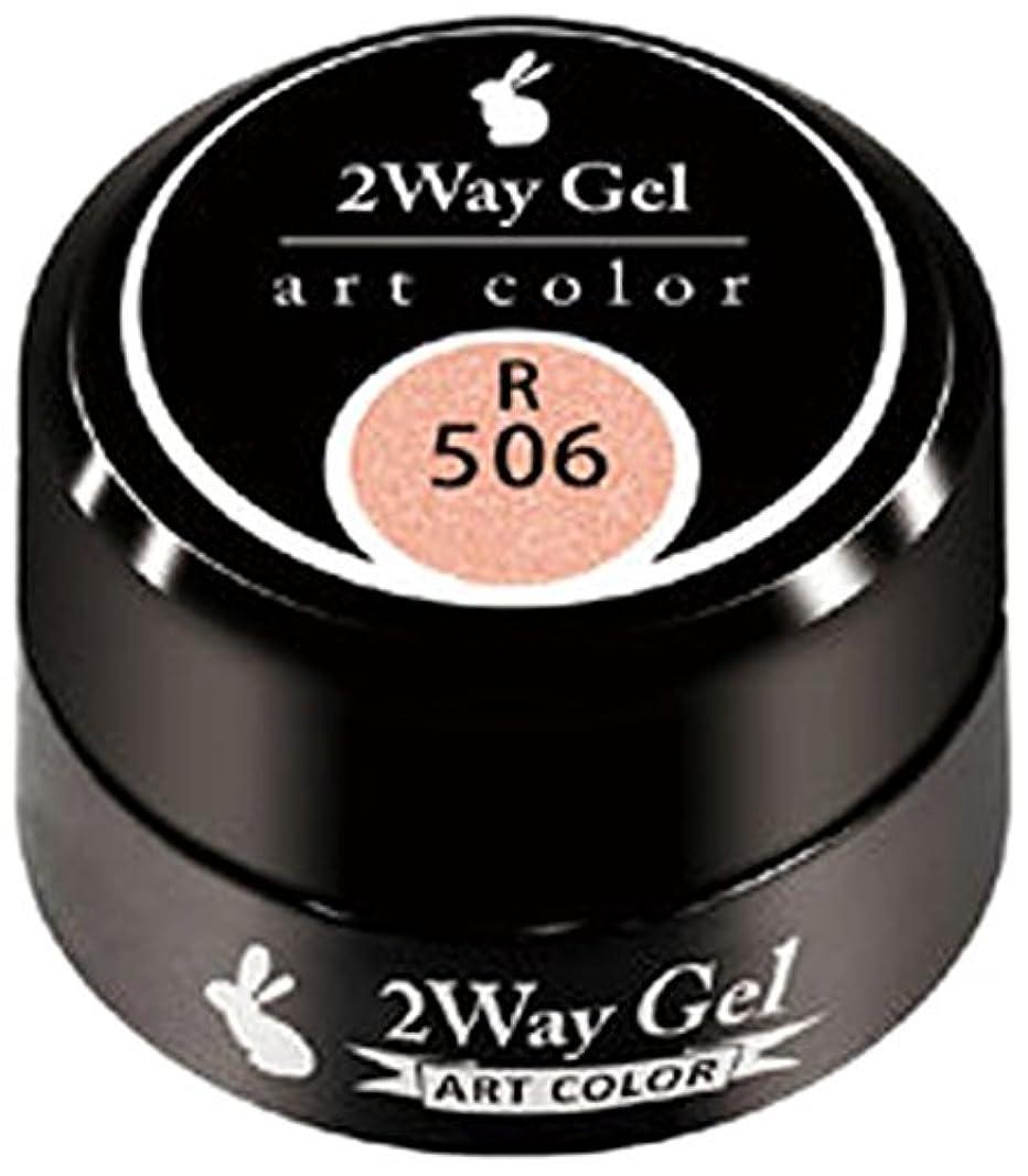 刺激する第三岩プリジェル ジェルネイル ツーウェイジェル アートカラーa R506 3g TWOWAY-R506