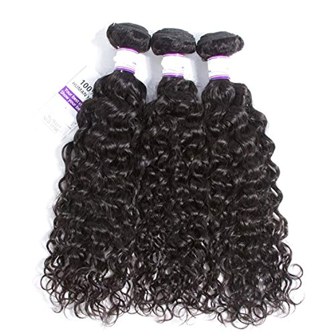 寛大さ生産性標高インドの水波実体髪3バンドル髪織り100%人間のremy髪横糸8-28インチ体毛延長 かつら (Length : 14 16 18)