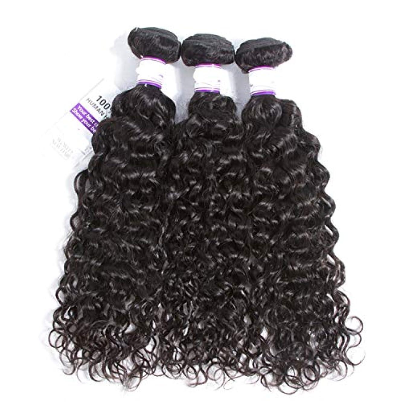 急降下誓い百インドの水波実体髪3バンドル髪織り100%人間のremy髪横糸8-28インチ体毛延長 かつら (Length : 14 16 18)