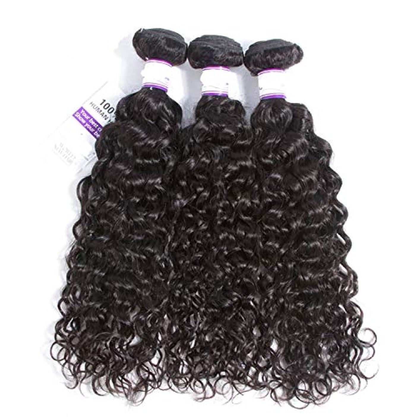 高く突然の大きさかつら インドの水波実体髪3バンドル髪織り100%人間のremy髪横糸8-28インチ体毛延長 (Length : 20 22 24)