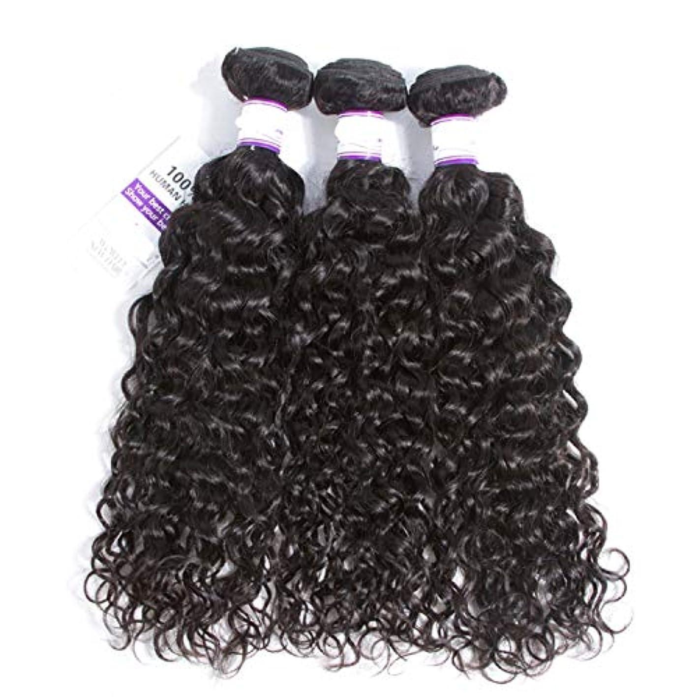 幻想発音塩辛いかつら インドの水波実体髪3バンドル髪織り100%人間のremy髪横糸8-28インチ体毛延長 (Length : 20 22 24)