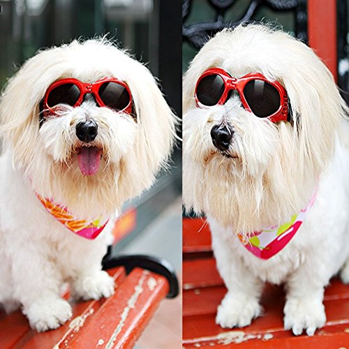 犬用 ゴーグル サングラス ワンちゃん用 ドッグ 紫外線 予防 対策 ペット用品 ドッグ用サングラス...