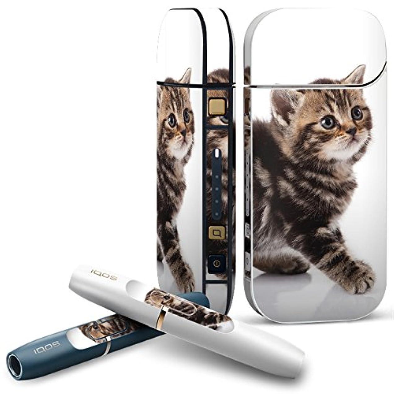 広い生き物八百屋さんIQOS 2.4 plus 専用スキンシール COMPLETE アイコス 全面セット サイド ボタン デコ アニマル 写真?風景 写真 動物 猫 ねこ 005930