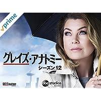 グレイズ・アナトミー シーズン12 (字幕版)