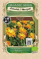 有機種子 カレンジュラ/オレンジ S 種蒔時期 暖地 9~11月、冷地:4~5月【 ネコポス可 】