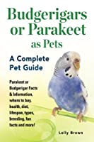 Budgerigars or Parakeet as Pets: Parakeet or Budgerigar Facts & Information, where to buy, health, diet, lifespan, types, breeding, fun facts and more! A Complete Pet Guide