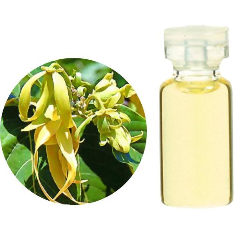 アジャ工業用ナット生活の木 Herbal Life イランイラン 3ml