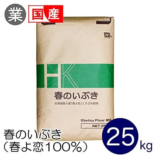 強力粉 春のいぶき(春よ恋100%) 北海道産パン用小麦粉 江別製粉 業務用 25kg 国産小麦